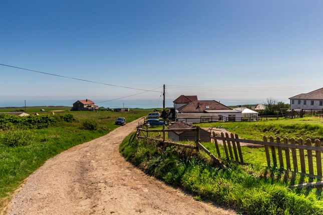 Thumbnail Bungalow for sale in Cornelius Avenue, Newhaven, East Sussex