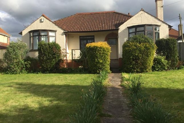 Thumbnail Property to rent in Elmwood Avenue, Bridgwater