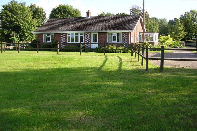 Thumbnail Detached bungalow for sale in Tibenham Road, Aslacton, Norwich