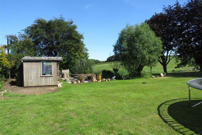 Garden of Coombe Keynes, Wareham BH20