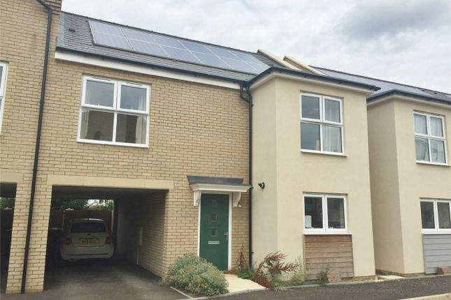 Thumbnail Semi-detached house to rent in Cranesbill Close, Orchard Park, Cambridge