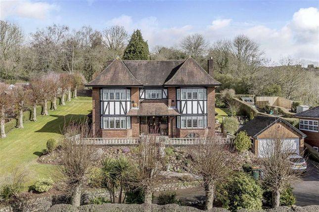 Thumbnail Detached house for sale in Malpas Road, Newport, Newport