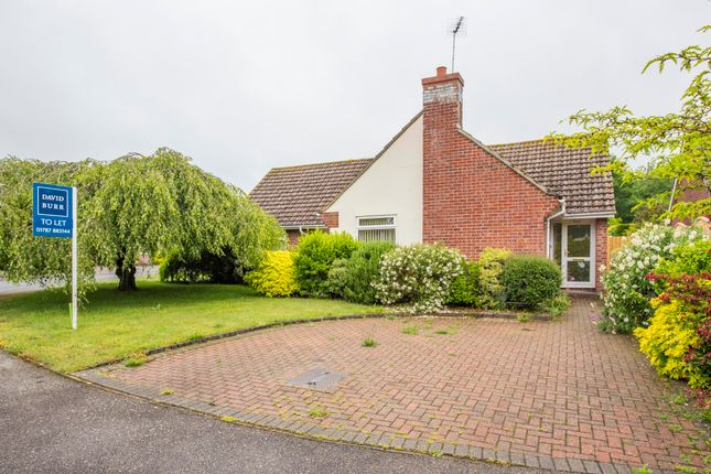 Thumbnail Detached bungalow to rent in Greys Close, Cavendish, Sudbury, Suffolk