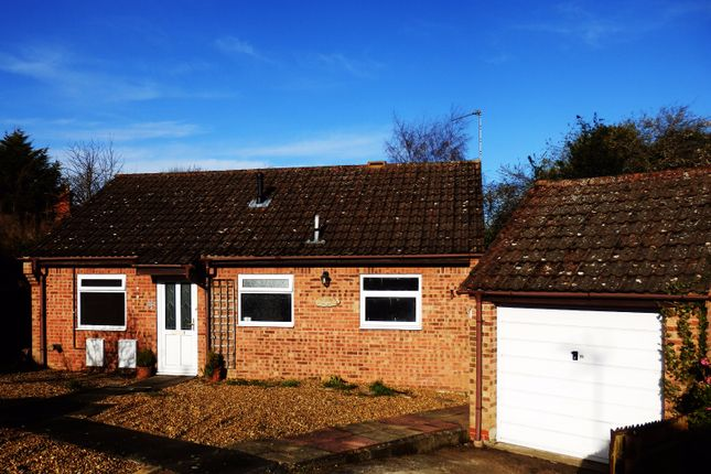 Thumbnail Bungalow to rent in Ropes Walk, Blofield, Norwich, Norfolk