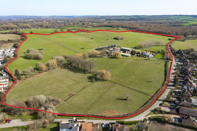 Thumbnail Property for sale in Bailes Lane, Normandy, Guildford