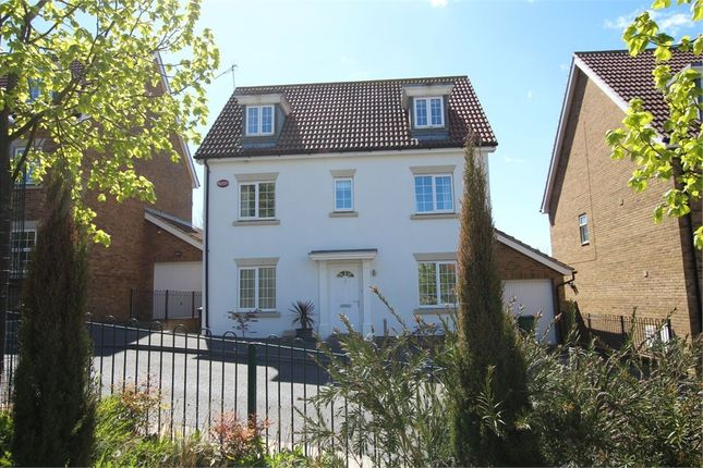 Thumbnail Detached house for sale in Bluebell Gardens, St Leonards-On-Sea, East Sussex