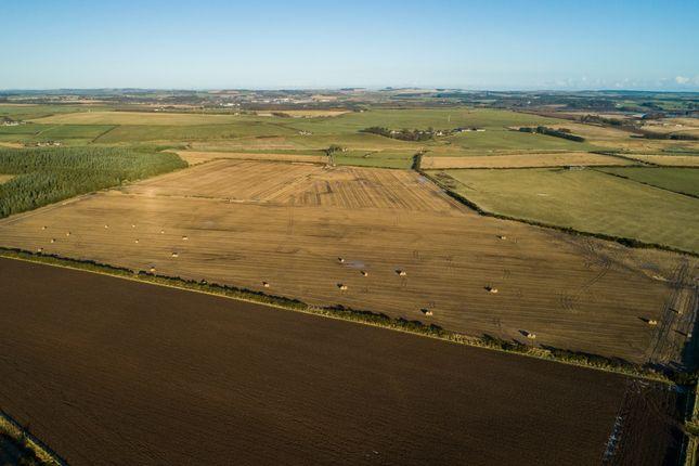 Farm for sale in Newburgh, Ellon AB41