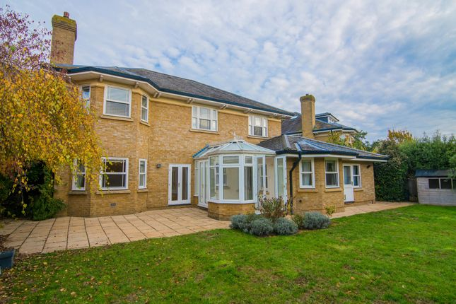 Thumbnail Detached house to rent in Wyatt Drive, Barnes, London, UK