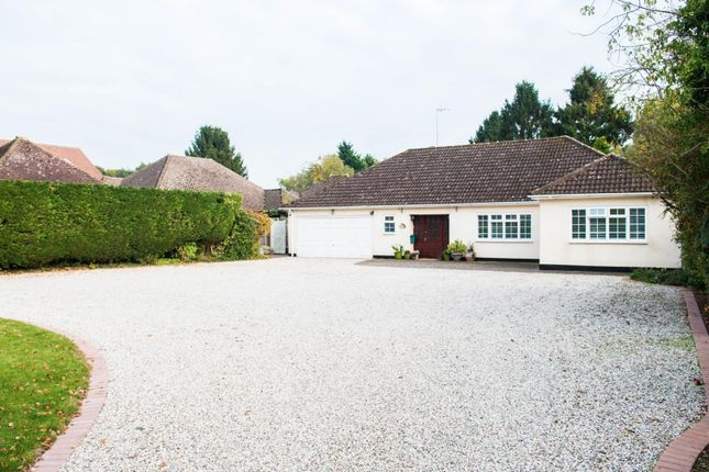 Thumbnail Detached bungalow for sale in Impressive Plot, Hook End, Brentwood