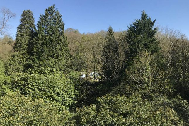 Img_0256 of Montacute Gardens, Tunbridge Wells, Kent TN4
