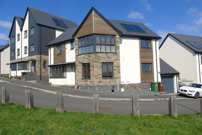 Thumbnail Detached house for sale in Airborne Drive, Derriford