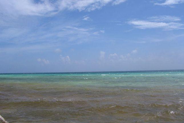 Buccaneer Beach - Tract 16, Grand Bahama, The Bahamas