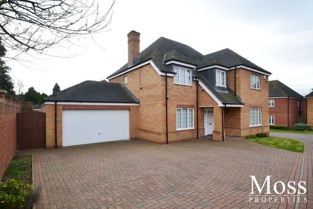 Thumbnail Detached house to rent in Centurion Fields, Bessacarr, Doncaster
