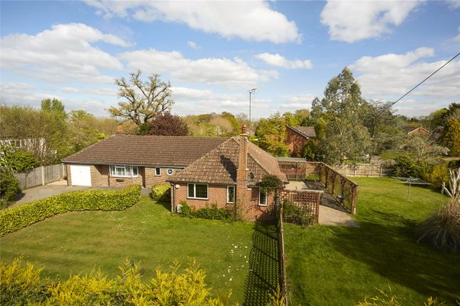 Thumbnail Detached bungalow for sale in The Street, West Clandon, Guildford, Surrey