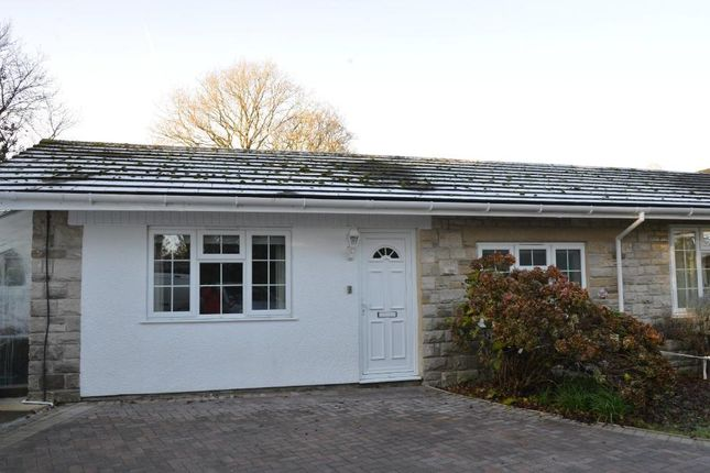 Thumbnail Semi-detached bungalow to rent in Green Lane, Axminster, Devon