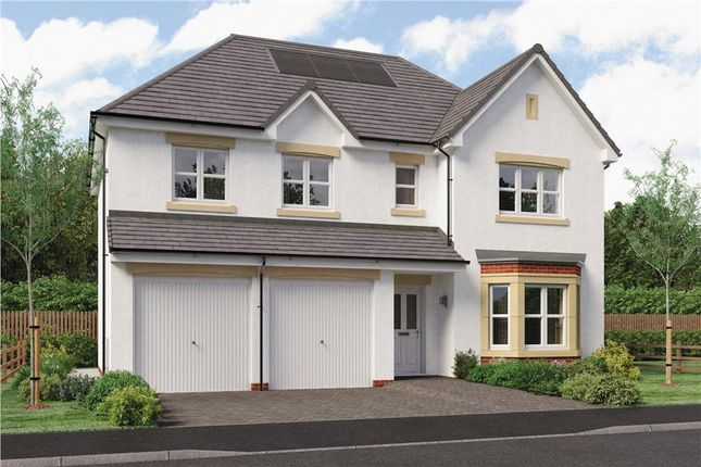 "Thumbnail Detached house for sale in ""Buttermere"" at The Leas, East Kilbride, Glasgow"