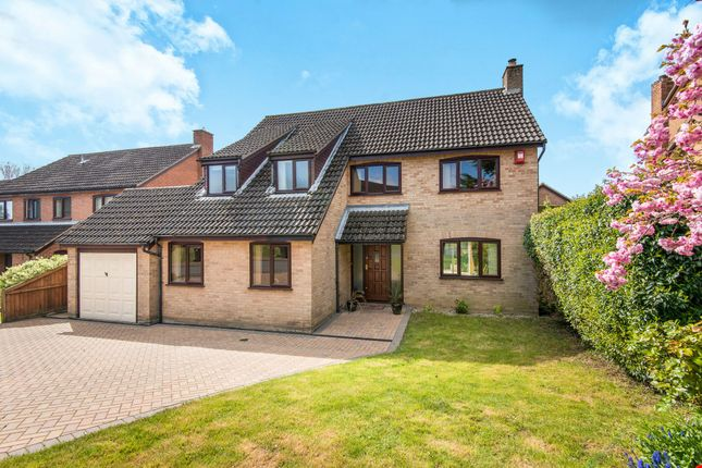 Thumbnail Detached house for sale in Armitage Close, Cringleford, Norwich, Norfolk