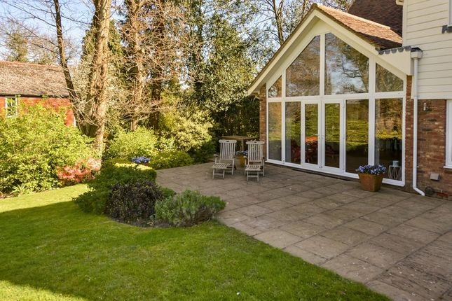 Thumbnail Detached house for sale in Cackle Street, Brede, Rye