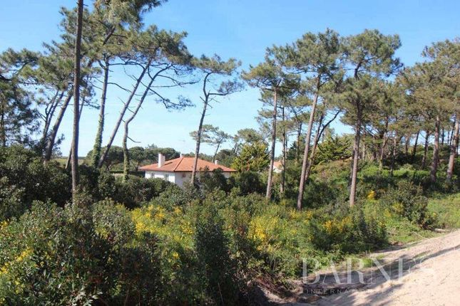 Thumbnail Land for sale in Anglet, 64600, France