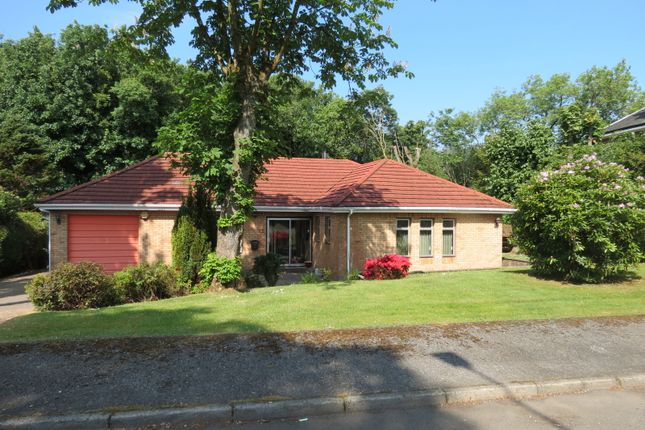 Thumbnail Detached bungalow for sale in Low Road, Paisley