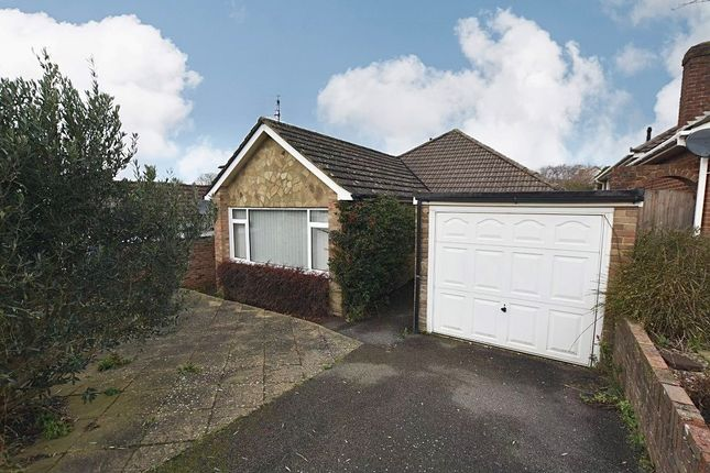 Thumbnail Detached bungalow to rent in The Close, Newhaven
