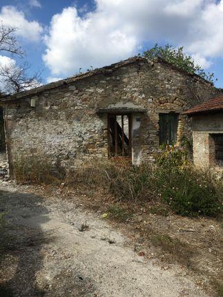 Ruin 6. of Lefkimmi, Corfu, Ionian Islands, Greece