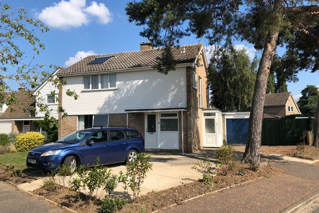 Thumbnail Detached house for sale in Nunsgate, Thetford