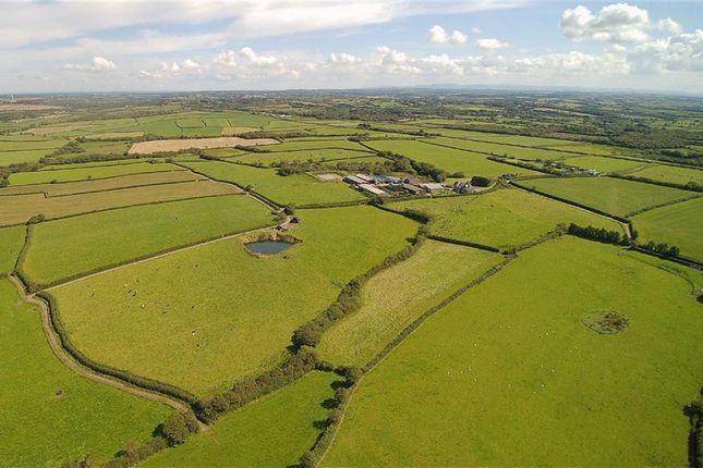 Thumbnail Farm for sale in Bridgerule, Holsworthy