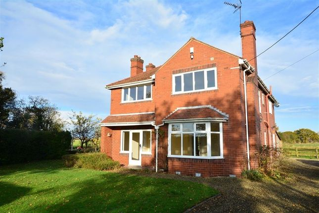 Thumbnail Detached house to rent in South Duffield Road, Osgodby, Selby