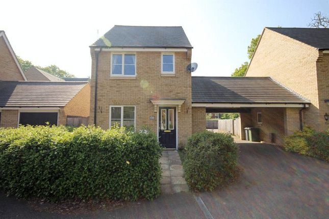 Thumbnail Detached house to rent in Nelson Drive, Little Plumstead, Norwich