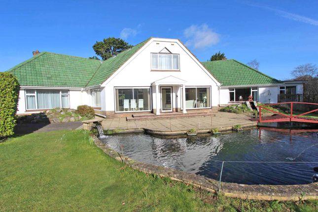 Thumbnail Detached house for sale in Sandy Down, Boldre, Lymington, Hampshire