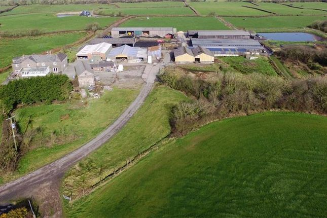Thumbnail Farm for sale in Bridgerule, Holsworthy