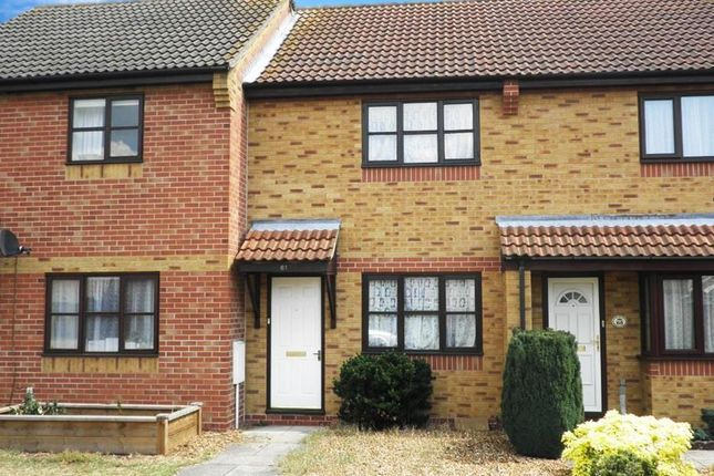 Thumbnail Terraced house to rent in St. Benedicts Road, Brandon