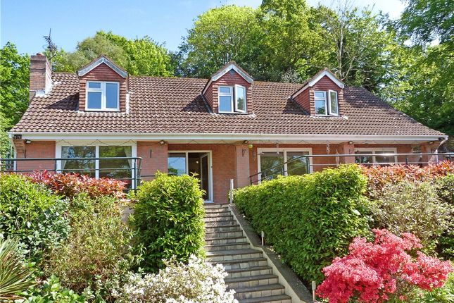 Thumbnail Detached house for sale in Newtown Lane, Corfe Mullen, Wimborne, Dorset