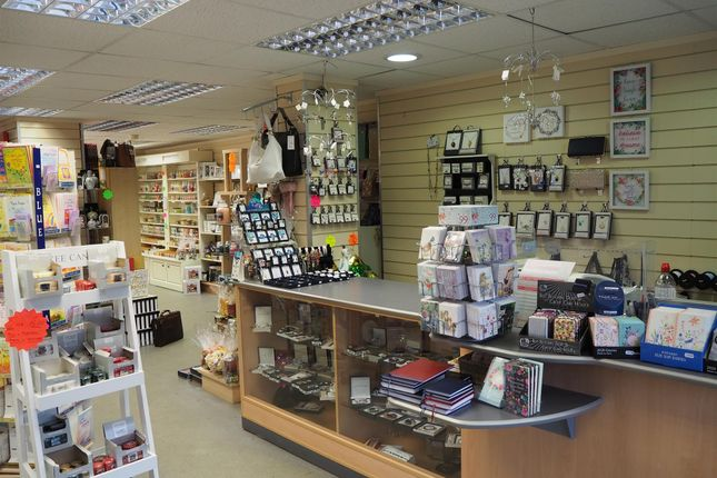Thumbnail Retail premises for sale in Gifts & Cards HU8, East Yorkshire