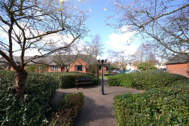 Thumbnail Property for sale in Victoria Gardens, Colchester, Essex