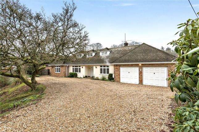 Thumbnail Detached house for sale in The Shrave, Four Marks, Alton, Hampshire