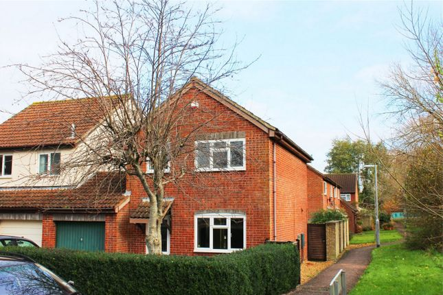 Thumbnail Detached house to rent in Lloyd Close, Galmington, Taunton