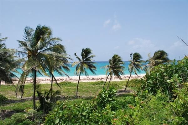 Thumbnail Property for sale in Beachfront, Beachfront, Christ Church, Barbados