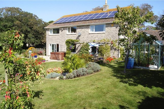 Thumbnail Detached house for sale in Swyre, Dorchester, Dorset