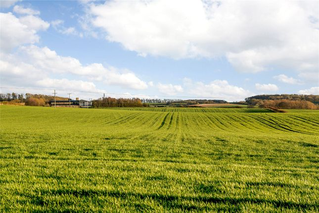 Thumbnail Land for sale in Great Chishill, Royston, Hertfordshire