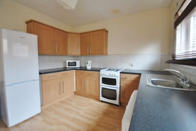 Thumbnail Detached house to rent in Kerr Street, Bridgeton, Glasgow, Lanarkshire