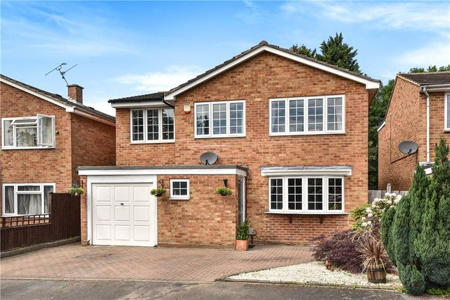 Thumbnail Detached house for sale in Badgerwood Drive, Frimley, Camberley