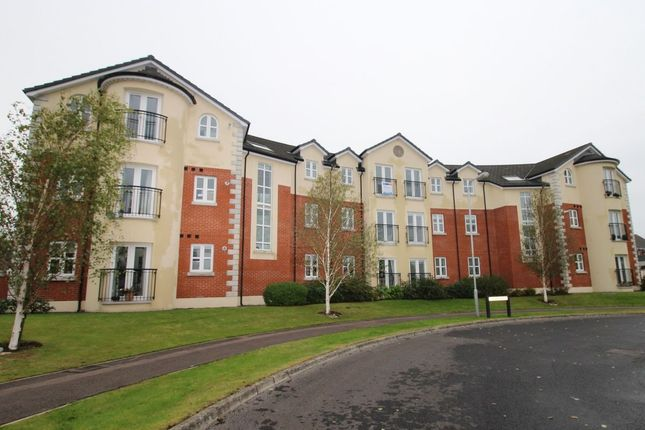 Thumbnail Flat to rent in Limetree Manor, Lisburn