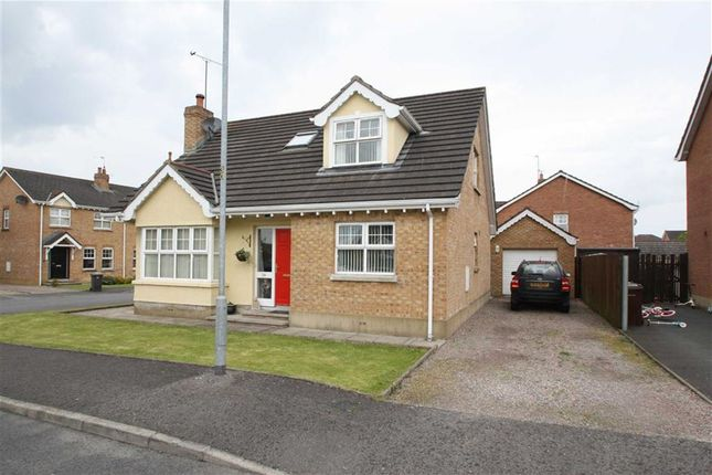 Thumbnail Detached bungalow for sale in Woodvale, Dromara, Down