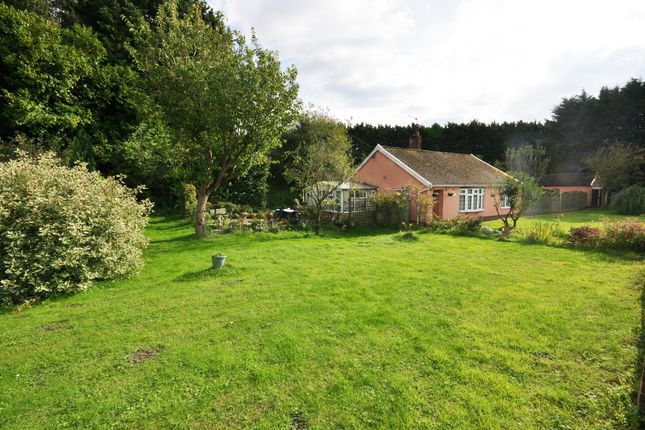 Thumbnail Detached bungalow for sale in Diss Road, Wattisfield, Diss