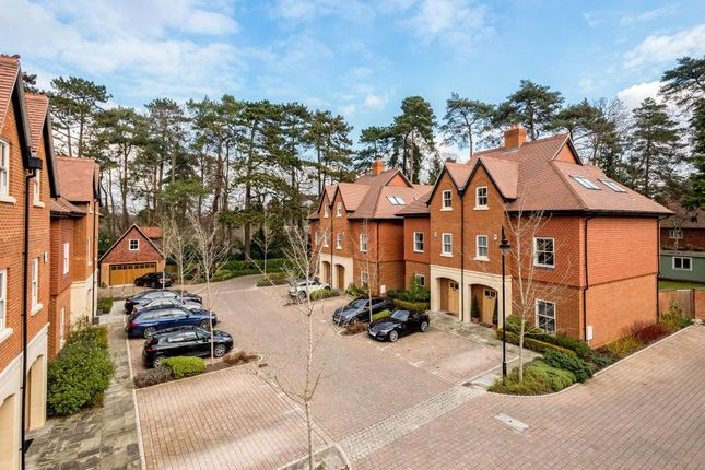 Thumbnail Semi-detached house to rent in Queensbury Gardens, Ascot