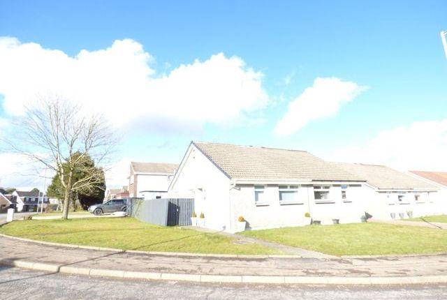 Thumbnail Semi-detached bungalow to rent in Aitken Road, Hamilton