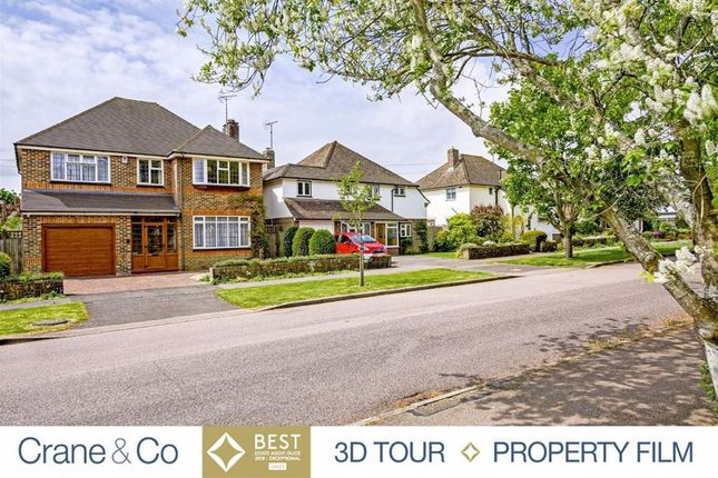 Thumbnail Detached house for sale in The Grove, Hailsham