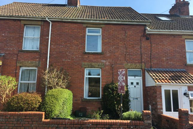 Thumbnail Terraced house to rent in Park Cottages, Crimchard